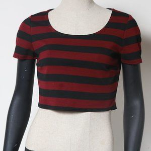 Maroon and Black Striped Forever 21 Crop Top